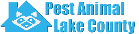 Lake County Wildlife and Animal Removal